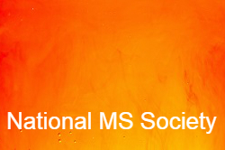 National MS Society Banner